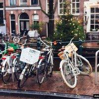 Cyklar vid en kanal